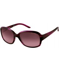 Oxydo Ladies OX 1023-N-S EY2 DZ Striped Violet Sunglasses