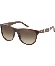 Tommy Hilfiger TH 1112-S JD Burgundy Sunglasses