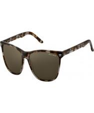 Oxydo OX 1039-S AB8 70 Havana Grey Sunglasses