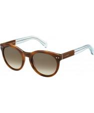Tommy Hilfiger Ladies TH 1291-N-S M9G J6 Havana Brown Azure Sunglasses