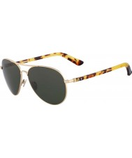 Calvin Klein Collection CK7377S Japanese Gold Sunglasses
