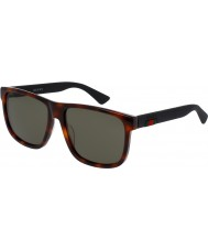 Gucci Mens GG0010S 006 Sunglasses