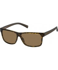 Polaroid Mens PLD2027-S M31 IG Havana Brown Polarized Sunglasses