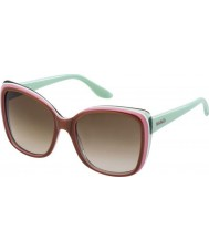 Max and Co Ladies 166-S 24V JD Brown Pink Green Sunglasses