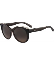 Chloe Ladies CE660SR Brown Sunglasses