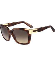 Chloe Ladies CE632S Havana Sunglasses