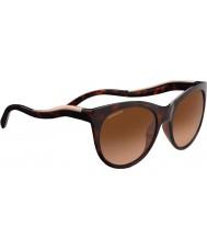 Serengeti 8567 Valentina Tortoise Sunglasses