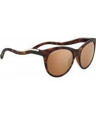Serengeti 8569 Valentina Tortoise Sunglasses