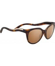 Serengeti 8574 Lia Tortoise Sunglasses