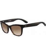Karl Lagerfeld Ladies KL870S Havana Sunglasses