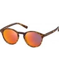 Polaroid PLD6013-S PPT OZ Blond Havana Polarized Sunglasses