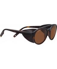 Serengeti 8587 Leandro Glacier Tortoise Sunglasses