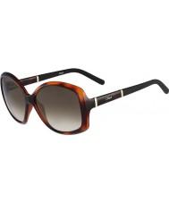Chloe Ladies CE663S Tortoiseshell Sunglasses
