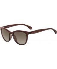 Calvin Klein Jeans Ladies CKJ811S Crystal Brown Sunglasses