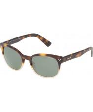 Police Mens Master 4 SPL143-0Z40 Shiny Havana Sunglasses