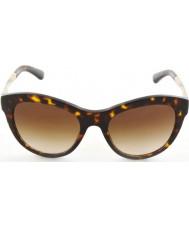 Dolce and Gabbana DG4243 53 Sicilian Taste Havana 502-131 Sunglasses