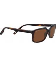Serengeti 8627 Renzo Tortoise Sunglasses