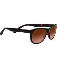 Serengeti 8671 Anteo Toroiseshell Sunglasses