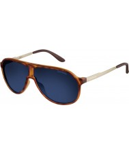 Carrera New Champion VR0 KU Light Havana Gold Sunglasses