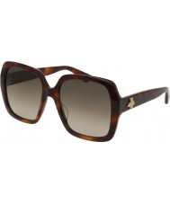 Gucci Ladies GG0096S 002 Sunglasses