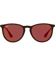 RayBan Erika RB4171 54 6339D0 Sunglasses