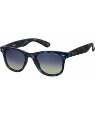 Polaroid PLD6009-NM SEC Z7 Havana Blue Polarized Sunglasses