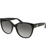 Gucci Ladies GG0097S 001 Sunglasses