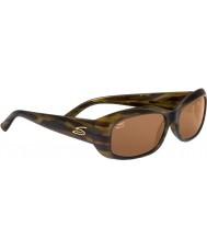 Serengeti Bianca Stripe Tortoiseshell Drivers Sunglasses