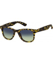 Polaroid PLD6009-NS SLG PW Havana Yellow Polarized Sunglasses