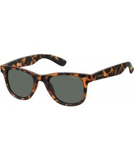 Polaroid PLD6009-NS SOG RC Havana Orange Polarized Sunglasses