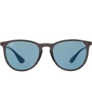 RayBan Erika RB4171 54 6340F7 Sunglasses