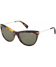 MaxMara Ladies MM Edgy I 8WW 70 Tortoiseshell Gold Sunglasses
