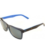 Polo Ralph Lauren PH4098 57 Casual Living Transparent Blue 556387 Sunglasses