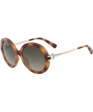 Longchamp Ladies LO605S 214 55 Sunglasses