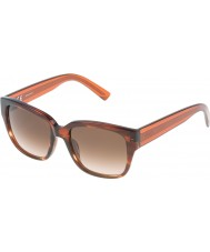 Nina Ricci Ladies SNR006-06XE Shiny Streaked Brown Sunglasses