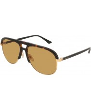 Gucci Mens GG0292S 004 60 Sunglasses