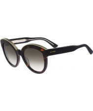 ETRO Ladies ET604S Tortoiseshell Sunglasses