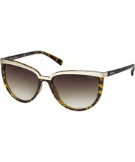 Polaroid PLD4016-S V08 LA Havana Polarized Sunglasses