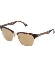 Zadig and Voltaire Ladies SZV055-4APG Shiny Havana Sunglasses