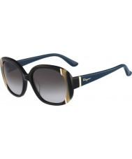Salvatore Ferragamo Ladies SF674S Black Sunglasses