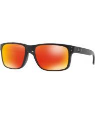 Oakley OO9102 55 E2 Holbrook Sunglasses