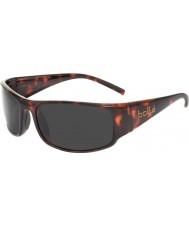 Bolle Prince Jr. Dark Tortoiseshell TNS Sunglasses