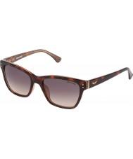 Zadig and Voltaire Ladies SZV056-0AHR Havana Glittery Beige Sunglasses