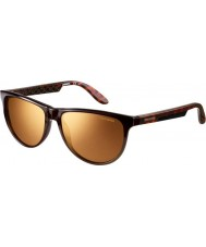 Carrera Ladies Carrera 5007 Gold Brown Sunglasses