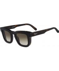 Salvatore Ferragamo Mens SF771S Tortoiseshell Sunglasses