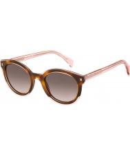 Tommy Hilfiger Ladies TH 1437-S LQ8 3X Pink Havana Sunglasses